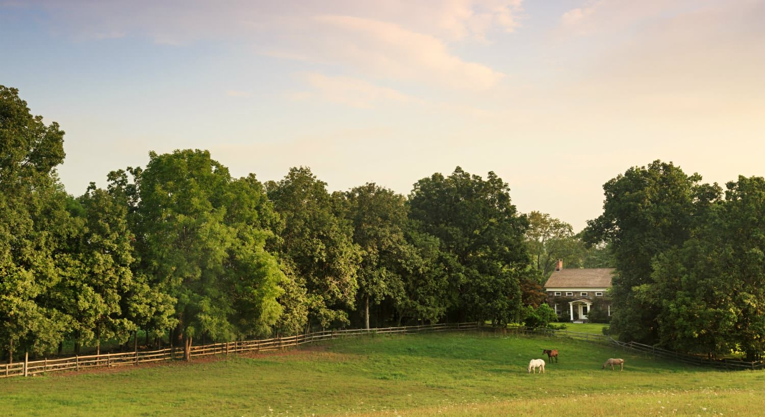 Large grassy pasture with three horses surrounded by split-rail fence and trees and view of inn in the distance