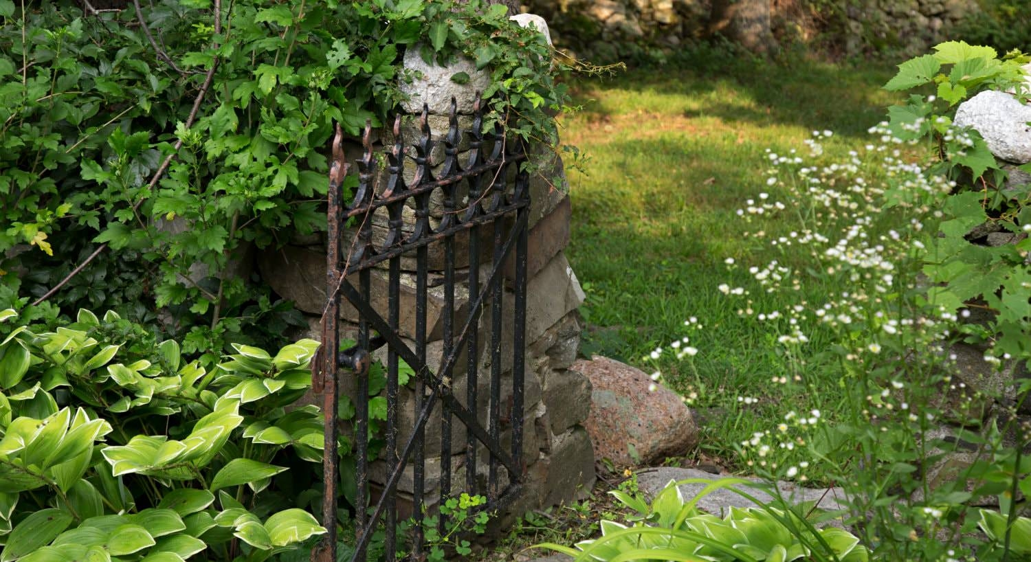 Stone wall with an open black wrought iron gate surrounded by greenery
