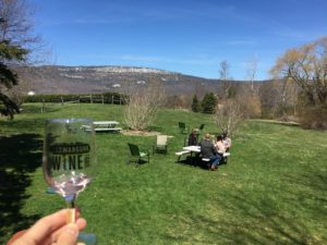 Wine glass against the backdrop of Hudson River