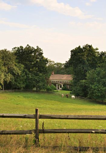 Exterior view of the front lawn with three horses surrounded by a split rail fence and green trees