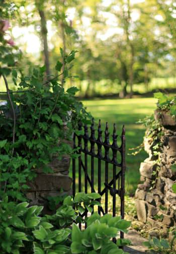 Stone wall with open black wrought iron gate surrounded by greenery