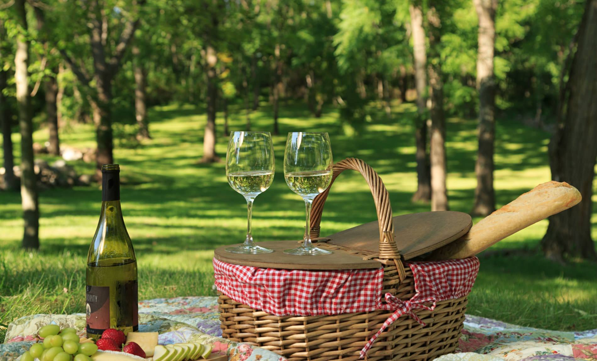 Picnic basket on a quilt with fresh fruit, cheese and wine surrounded by green grass and trees
